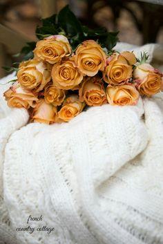Ana Rosa l Caramel Roses