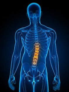 Why Continue Chiropractic Care?