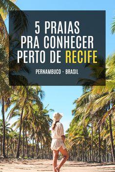 5 praias pra conhecer perto de Recife - Pernambuco - Brasil