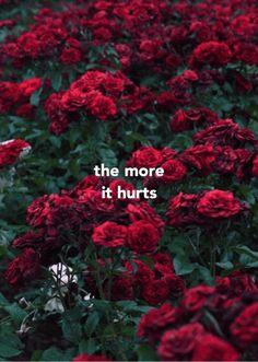 Ideas For Fashion Quotes Illustration Posts Rose Illustration, Garden Illustration, Beautiful Gif, Beautiful Roses, Flower Wallpaper, Wallpaper Backgrounds, Estilo Floral, Animated Gifs, Magic Garden