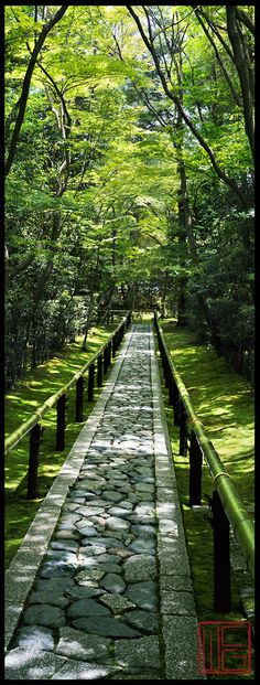 Daitoku-ji |Spring Gardens In Kyoto Japan Beautiful Landscapes, Beautiful Gardens, Plantation, Spring Garden, Garden Paths, Fence Garden, Pathways, Landscape Architecture, The Great Outdoors