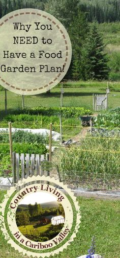 Planning your food garden is important! Here's how to get your garden plan growing!