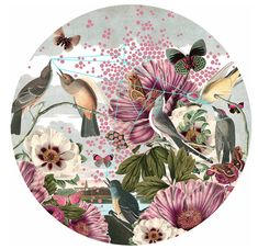 Birds & Butterflies 60 x Somerset Photo Satin on paper Signed Limited Edition Print A digital collage of historical & contemporary images ? Digital Collage, Collage Art, Digital Art, Contemporary Art For Sale, Limited Edition Prints, Botanical Art, Bird Art, Online Art Gallery, Art Inspo