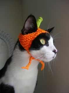 Trick or Treat!  Pumpkin Cat Hat. Etsy.