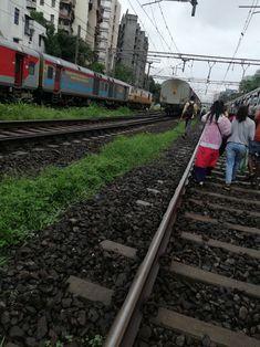 Railroad Tracks, Mumbai, Bombay Cat, Train Tracks