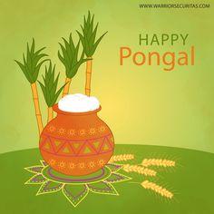 We Wish You All  Happy Pongal 2017. www.warriorsecuritas.com #pongal #festival #sankranthi