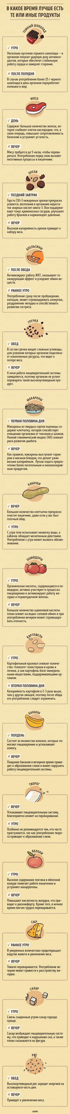 medpravila.com