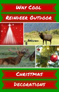Her are some very special reindeer outdoor christmas decorations All Things Christmas, Christmas Fun, Christmas Ornaments, Outdoor Reindeer Christmas Decorations, Holiday Decor, Fashion Lookbook, Women's Fashion, Festivals, Beauty