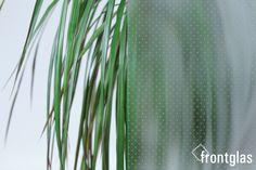 MADRAS ® Punto weiß  www.frontglas.de #Glas #Glass