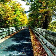 One of our viewers sent this photo of the bike path at Mill Creek MetroParks. You can send your fall pics to weatherpics@wfmj.com. We will feature as many as we can on air and online.