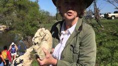 Dallas Paleontological Society - YouTube Dallas, Friends, Videos, Youtube, Amigos, Boyfriends, Youtubers, Youtube Movies