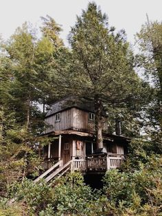 This is my parents 25-year old cabin in the middle of nowhere. Submitted by Meriel Anderson