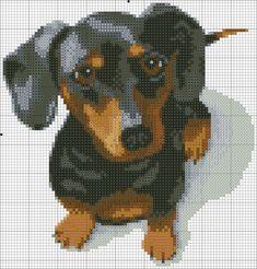 Foto sul muro della comunità   VK Cross Stitch Bird, Simple Cross Stitch, Cross Stitch Animals, Modern Cross Stitch, Cross Stitch Charts, Cross Stitch Designs, Cross Stitching, Cross Stitch Embroidery, Cross Stitch Patterns