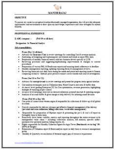 Sales  Marketing Resume Sample Doc   Career