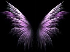 Purple Angel Wings - abstract, angel, 3d, wings, purple