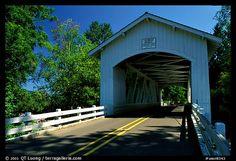 White covered bridge, Willamette Valley. Oregon, USA (color)