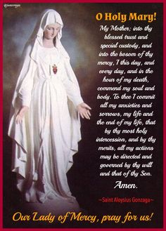 Our blessed Mother Prayers To Mary, Special Prayers, Catholic Prayers, Rosary Prayer, My Prayer, Prayer Board, Spiritual Prayers, Prayers For Healing, Blessed Mother Mary