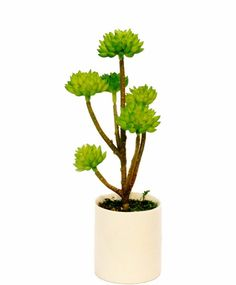 St 2 Styles Can Choose Home Decoration Small White Ceramic Planter - Rounded Leaf Plant - Artificial Succulent Plant Yellow Flower Bonsai (yellow no.2) *** For more information, visit image link.