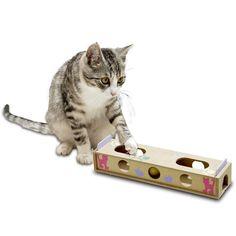 Smart Cat Gerade mit Rasselball-Intelligenzspielzeug für Katzen Spielzeug