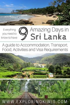 A nine day itinerary of our experiences discovering Sri Lanka along with practical information to help you plan your own adventure to this amazing country. Places To Travel, Places To See, Travel Destinations, Vietnam, Cebu, Ella Sri Lanka, Travel Around The World, Around The Worlds, Sri Lanka Itinerary