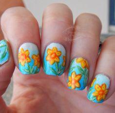 Hello Spring Daffodils