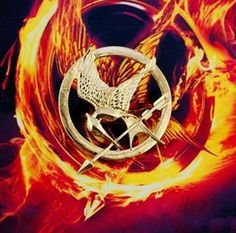 Hunger Games Mockingjay Pin E-busienss http://www.amazon.com/dp/B00GZD3F80/ref=cm_sw_r_pi_dp_9alfub1Z2RJB7