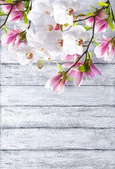 Purple Flower Background, Flower Background Wallpaper, Flower Phone Wallpaper, Flower Backgrounds, Purple Flowers, Wallpaper Backgrounds, Beauty Background, Flower Wall Backdrop, Wall Backdrops
