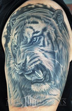Google Image Result for http://www.galleryoftattoosnow.com/MikeDevriesTattoosHOSTED/images/gallery/greytiger_new.jpg