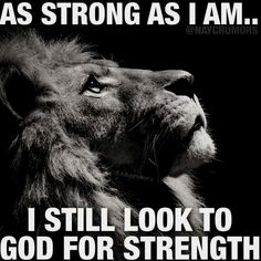 Tattoo quotes about strength warriors jesus 46 ideas - Tattoo Design Prayer Quotes, Faith Quotes, Wisdom Quotes, True Quotes, Bible Quotes, Jesus Quotes, Tattoo Quotes About Strength, Quotes About God, Inspiring Quotes About Life