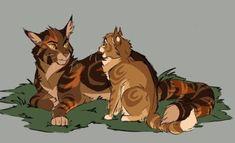 Warrior Cats | Tumblr Tawnypaw and Mothkit