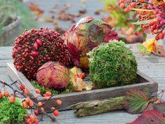 Hydrangea Care, Hydrangea Flower, Garden Soil, Nature Crafts, Fall Diy, Plant Decor, Flower Decorations, Seasonal Decor, Flower Arrangements