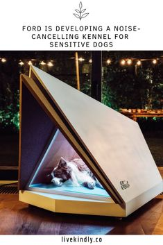 ford europe's quiet kennel is a noise-cancelling doghouse with a modern, minimalistic design, preventing your pup from feeling the fear of fireworks. Modern Dog Houses, Cool Dog Houses, Luxury Dog House, House Dog, Canis, Dog Anxiety, Pet Furniture, Pet Home, Dog Crate