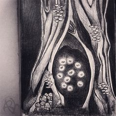 A Saturday evening sketch of an old, gnarled tree with #fireflies dancing in its hollow. Copyright Amalia Hillmann