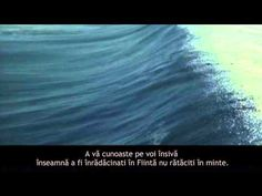 Aflati cine sunteti cu adevărat - YouTube Eckhart Tolle, Waves, Youtube, Outdoor, Outdoors, Outdoor Games, Outdoor Living, Youtube Movies, Wave