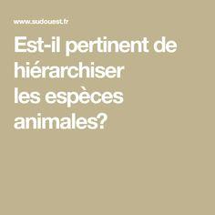 Est-il pertinent de hiérarchiser lesespèces animales?