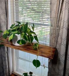 Window Shelves, Plant Shelves, Wooden Shelves, Display Shelves, Wall Shelves, Suspended Shelves, Hanging Rope Shelves, Floating Shelves, Window Plants