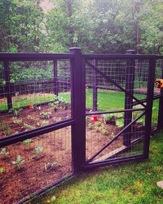 17 Beautiful Garden Fence Ideas : Check out These 17 Beautiful Garden Fence Ideas An inspirational perimeter or privacy fence around your garden keeps out unwanted guests but it also adds structure and beauty to your landscaping. Garden Patio Sets, Diy Garden Fence, Backyard Fences, Cheap Garden Fencing, Garden Shrubs, Shade Garden, Border Garden, Easy Garden, Garden Planters