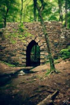 poinsett bridge - the oldest intact bridge in S. It once serves as an important link in State Rd, which connected Charleston with the mountain communities in N. The graceful gothic arch stone bridge spans the little gap creek. The Places Youll Go, Places To See, Old Bridges, Burn Bridges, Famous Bridges, Ouvrages D'art, O Portal, Les Religions, Covered Bridges