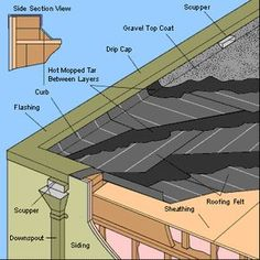 Flat roof like this @Alyson Knappe Davis
