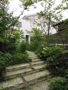 野草の庭・茶庭づくり 風(ふわり) 日本の庭づくりを提案