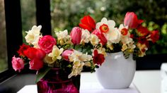 Preview wallpaper roses, freesia, flowers, daffodils, tulips, bouquets, vases 1920x1080