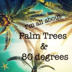 I'm all about palm Trees & 80 degrees! And so is Indian Rocks Beach! I'm all about palm Trees & 80 degrees! And so is Indian Rocks Beach! Indian Shores Beach, Indian Rocks Beach, Beach Bum, Ocean Beach, Beach Please, No Bad Days, Beach Quotes, Surf Quotes, Summer Quotes
