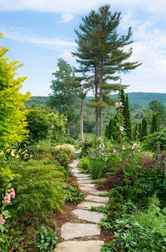 An irregular stone path with a stunning view runs beside the berry bushes, past Acer dissectum 'Inaba-shidare', and into the parterre garden. #gardening #veggiegarden #bhg