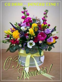 Funeral Flowers, Wedding Flowers, Growing Orchids, Same Day Flower Delivery, Orchid Plants, Hat Boxes, Orchid Care, Good Morning Images, Pretty Flowers