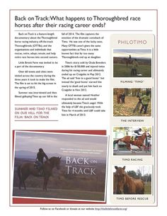 Our 2014 Newsletter!