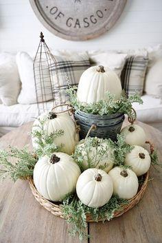 秋の定番デコレーションといえばオレンジのかぼちゃですが、いかにもミーハーな感じになるのは避けたいですよね。そこで、オシャレに白くペイントしたホワイトパンプキンをご紹介します。