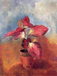 Begonia in a Pot, Odilon Redon Medium: oil on canvas