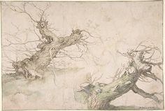 Studies of Two Pollard Willows; Verso: Wide Landscape Prospect.  Pen & Brown ink w/ watercolor & chalk.  Abraham Bloemart.  ~16th century.