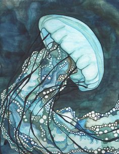 AQUA Sea Nettle Jellyfish 8.5 x 11 print of detailed watercolour artwork in dark…