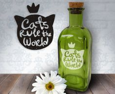 Cats Rule The World  17oz Laser Etched Recycled by HumbleElephant